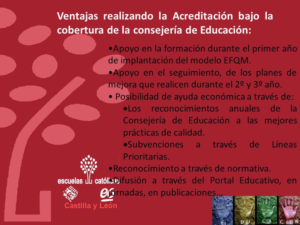 Castilla y León SEGUNDO AÑO, el centro implantará el primer plan de mejora. TERCER AÑO, implantará el segundo plan de mejora. CUARTO AÑO, el centro ti
