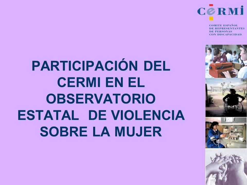 PARTICIPACIÓN DEL CERMI EN EL OBSERVATORIO ESTATAL DE VIOLENCIA SOBRE LA MUJER