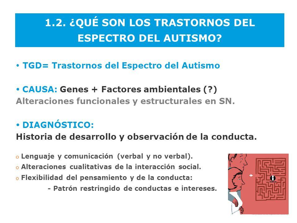 1.2. ¿QUÉ SON LOS TRASTORNOS DEL ESPECTRO DEL AUTISMO? TGD= Trastornos del Espectro del Autismo CAUSA: Genes + Factores ambientales (?) Alteraciones f