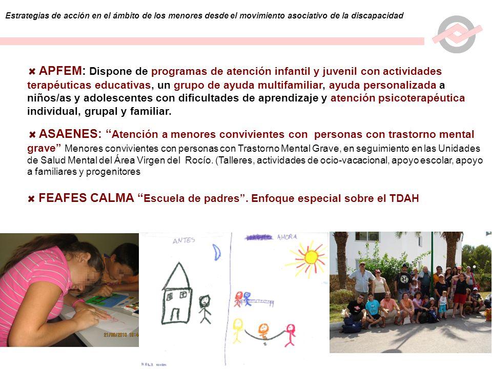 9 Estrategias de acción en el ámbito de los menores desde el movimiento asociativo de la discapacidad APFEM: Dispone de programas de atención infantil
