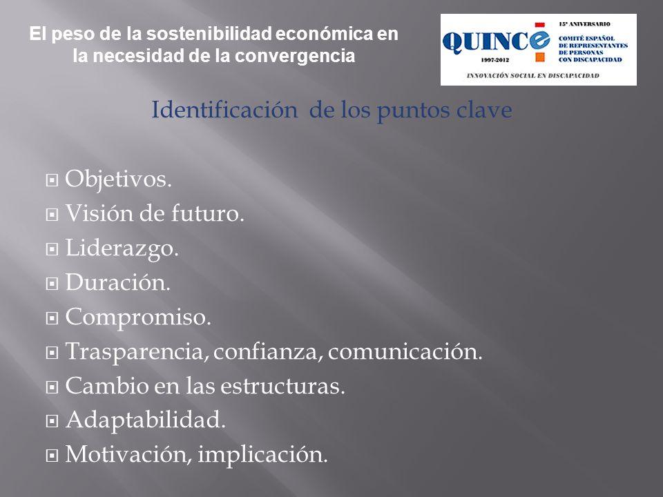 Identificación de los puntos clave Objetivos.Visión de futuro.