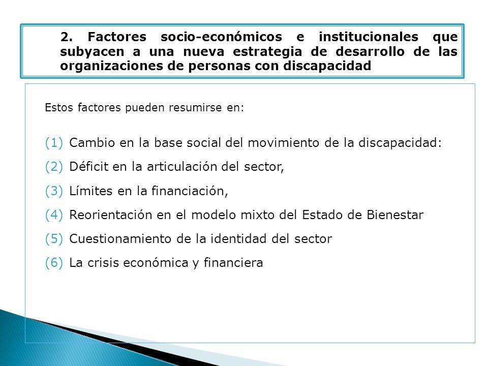 Estos factores pueden resumirse en: (1)Cambio en la base social del movimiento de la discapacidad: (2)Déficit en la articulación del sector, (3)Límites en la financiación, (4)Reorientación en el modelo mixto del Estado de Bienestar (5)Cuestionamiento de la identidad del sector (6)La crisis económica y financiera 2.