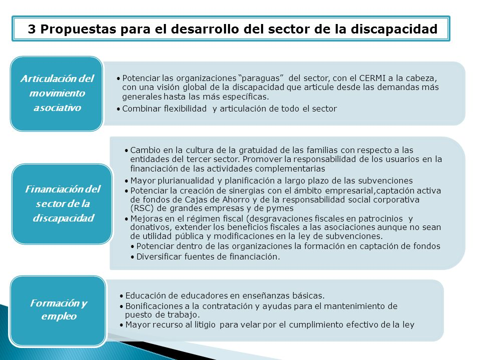 3 Propuestas para el desarrollo del sector de la discapacidad Potenciar las organizaciones paraguas del sector, con el CERMI a la cabeza, con una visión global de la discapacidad que articule desde las demandas más generales hasta las más específicas.