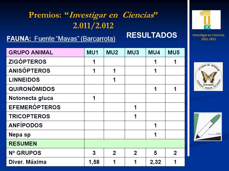 RESULTADOS FAUNA: FAUNA: Fuente Mayas (Barcarrota) GRUPO ANIMALMU1MU2MU3MU4MU5 ZIGÓPTEROS1 11 ANISÓPTEROS11 1 LINNEIDOS 1 QUIRONÓMIDOS 11 Notonecta gl