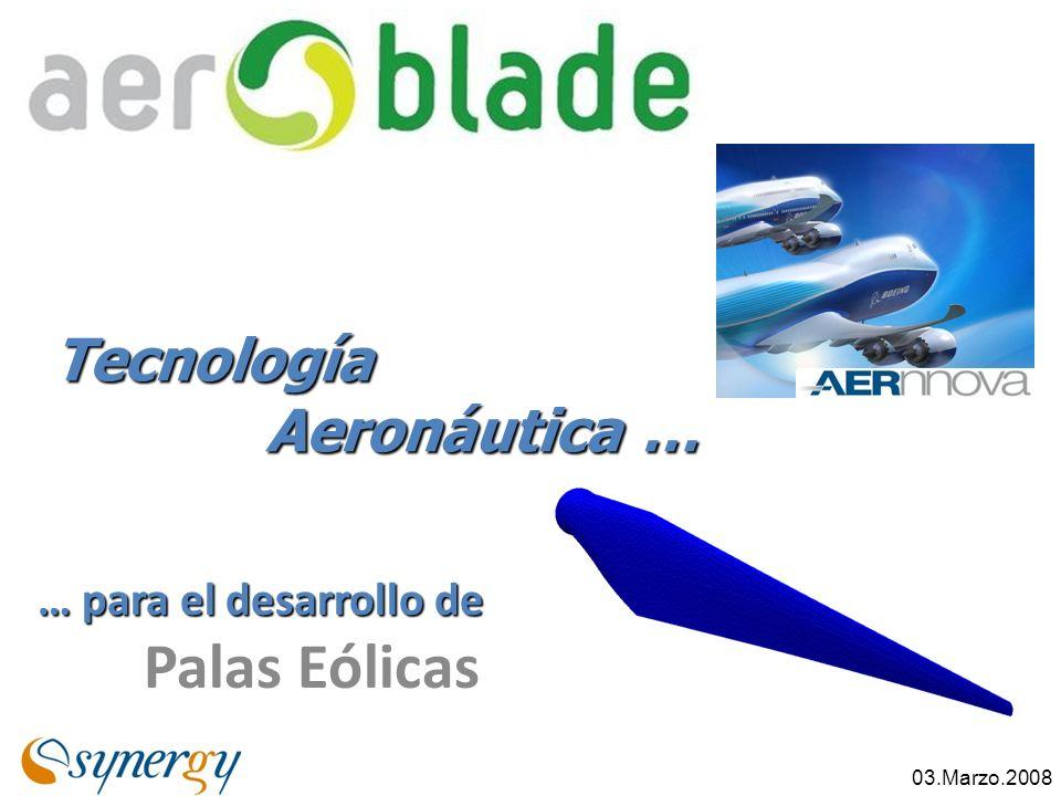 … para el desarrollo de Palas Eólicas Tecnología Aeronáutica … 03.Marzo.2008