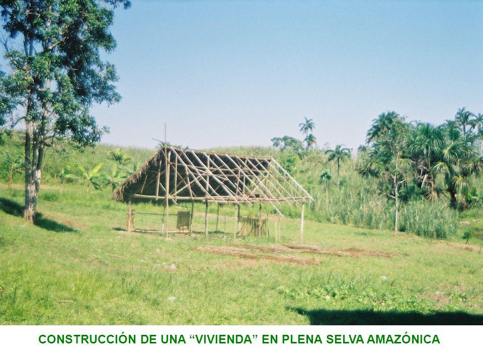 CONSTRUCCIÓN DE UNA VIVIENDA EN PLENA SELVA AMAZÓNICA