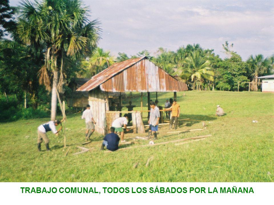 TRABAJO COMUNAL, TODOS LOS SÁBADOS POR LA MAÑANA
