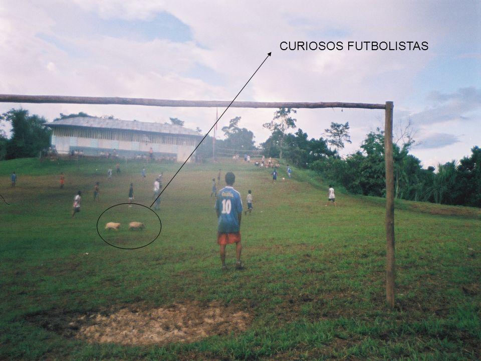 CURIOSOS FUTBOLISTAS