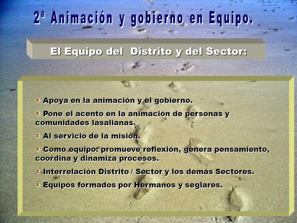 El Equipo del Distrito y del Sector: Apoya en la animación y el gobierno.