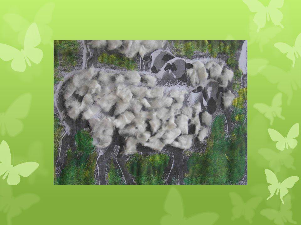 El buen pastor lleva compañera en el morral quiere viajar por Castilla y León
