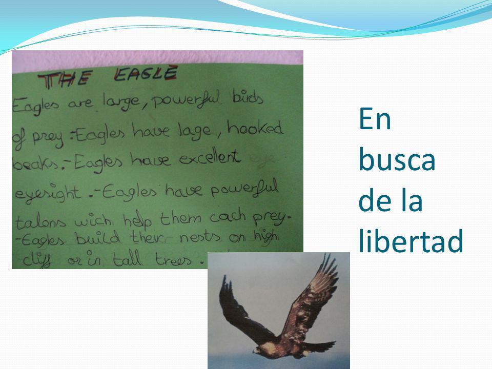 En busca de la libertad