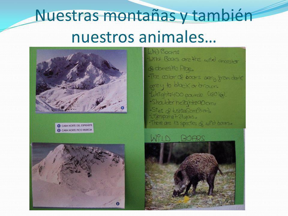 Nuestras montañas y también nuestros animales…