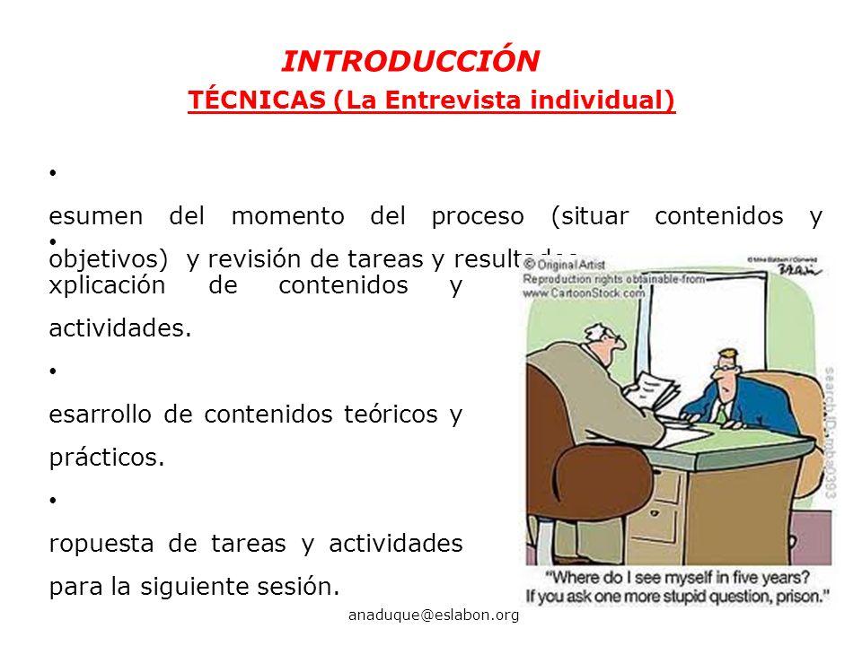 TÉCNICAS (La Entrevista individual) R esumen del momento del proceso (situar contenidos y objetivos) y revisión de tareas y resultados. INTRODUCCIÓN a
