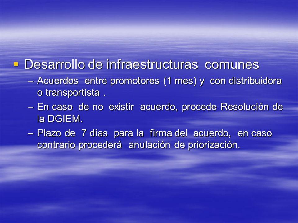 Desarrollo de infraestructuras comunes Desarrollo de infraestructuras comunes –Acuerdos entre promotores (1 mes) y con distribuidora o transportista.