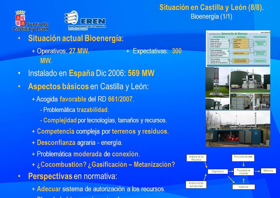 Situación en Castilla y León (8/8).