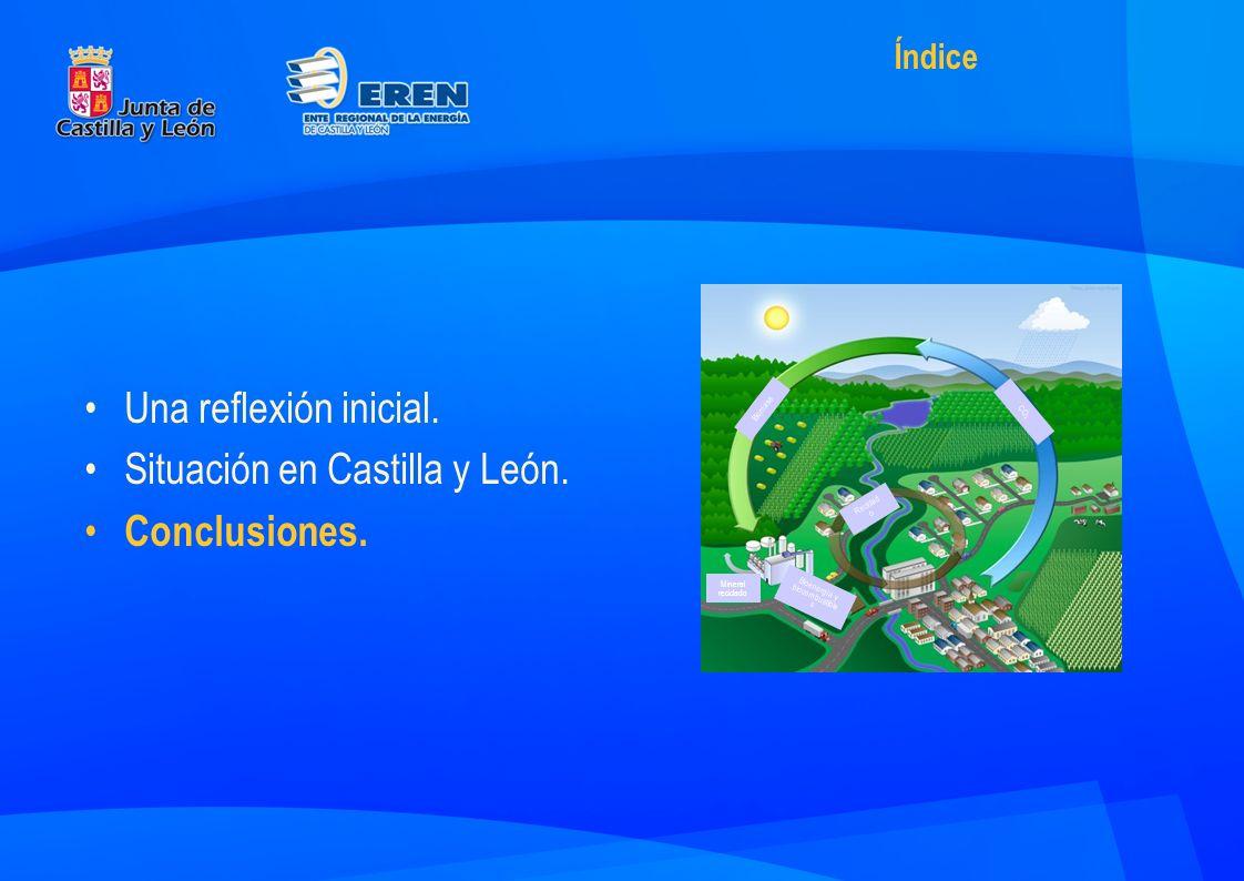 Una reflexión inicial. Situación en Castilla y León.