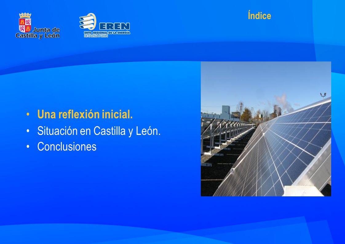 Una reflexión inicial. Situación en Castilla y León. Conclusiones Índice