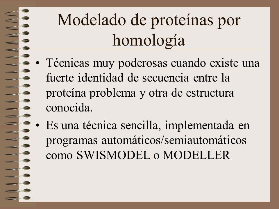 Modelado de proteínas por homología Técnicas muy poderosas cuando existe una fuerte identidad de secuencia entre la proteína problema y otra de estruc