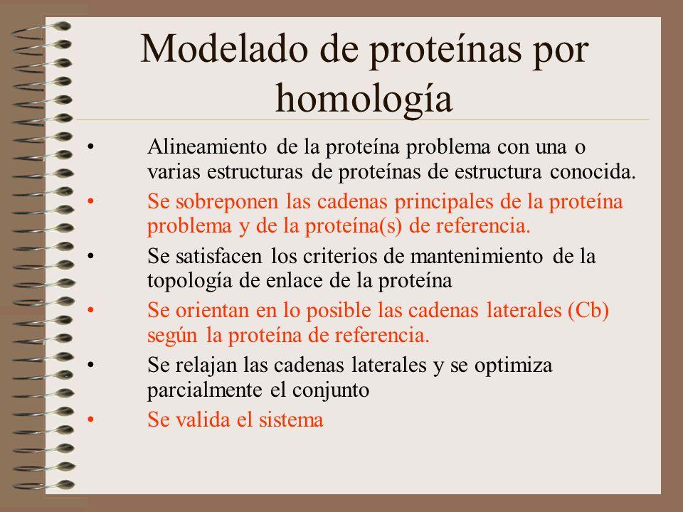 Modelado de proteínas por homología Alineamiento de la proteína problema con una o varias estructuras de proteínas de estructura conocida. Se sobrepon
