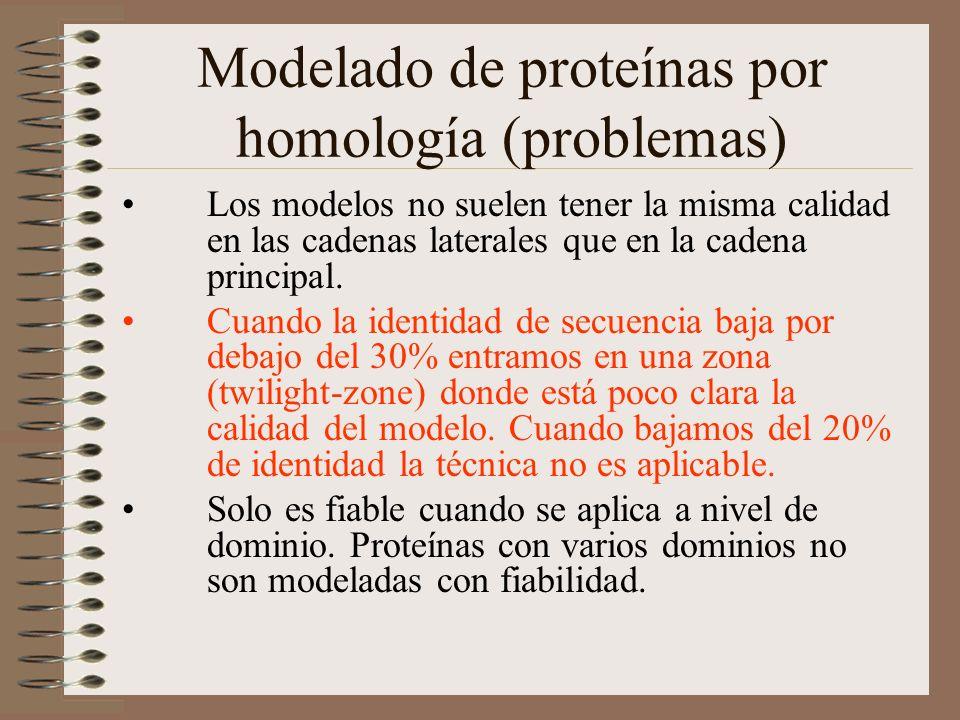 Modelado de proteínas por homología (problemas) Los modelos no suelen tener la misma calidad en las cadenas laterales que en la cadena principal. Cuan