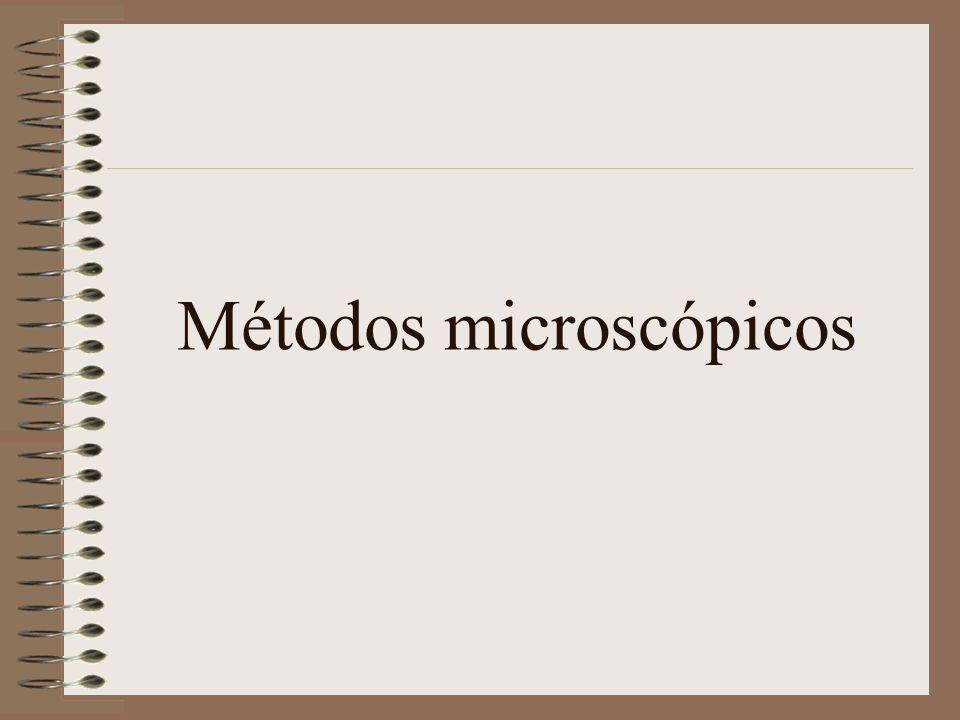 Métodos microscópicos