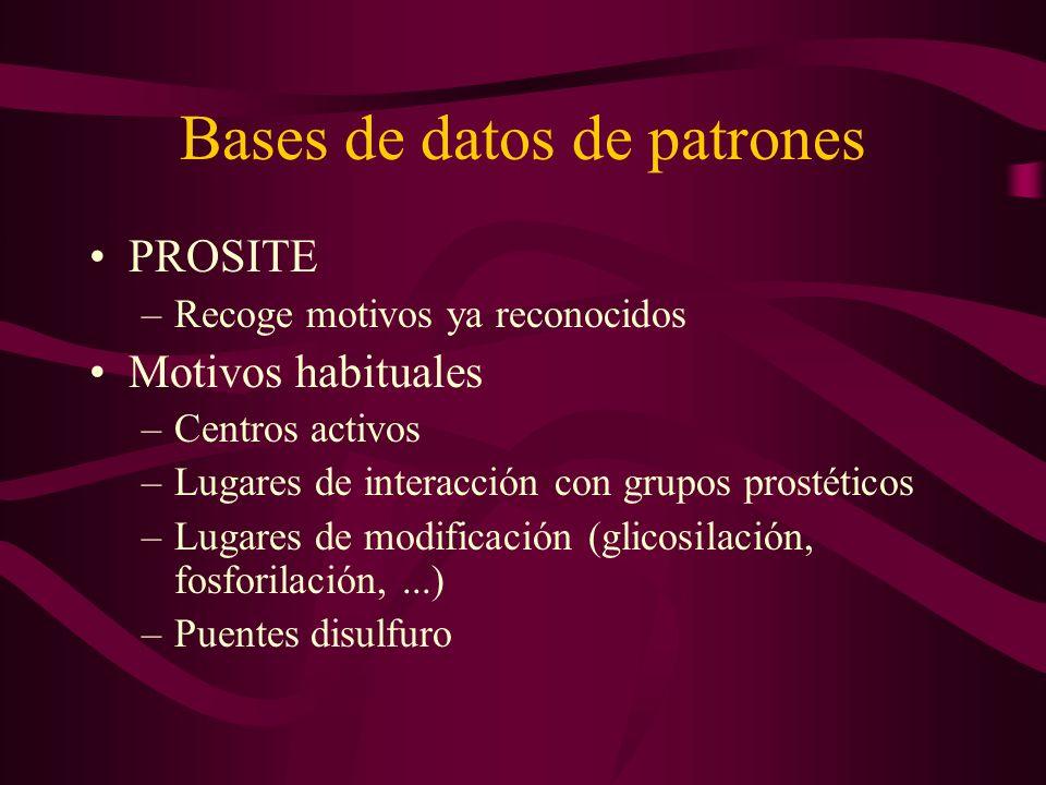 Bases de datos de patrones PROSITE –Recoge motivos ya reconocidos Motivos habituales –Centros activos –Lugares de interacción con grupos prostéticos –Lugares de modificación (glicosilación, fosforilación,...) –Puentes disulfuro