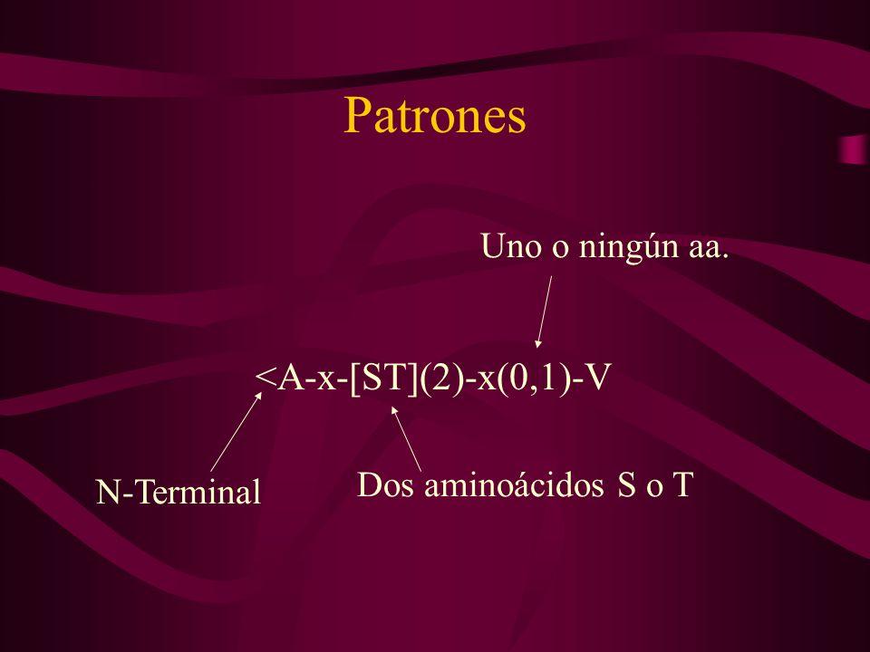 Patrones <A-x-[ST](2)-x(0,1)-V N-Terminal Uno o ningún aa. Dos aminoácidos S o T
