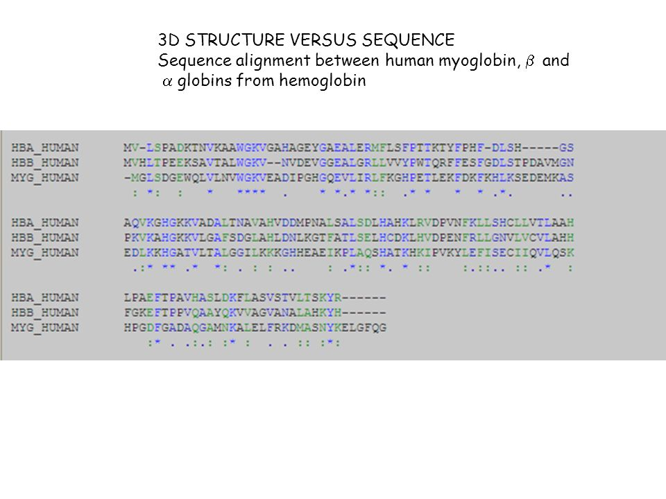 3D STRUCTURE VERSUS SEQUENCE Sequence alignment between human myoglobin, and globins from hemoglobin