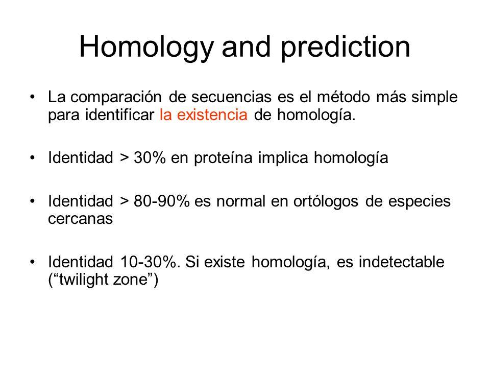 Homology and prediction La comparación de secuencias es el método más simple para identificar la existencia de homología. Identidad > 30% en proteína