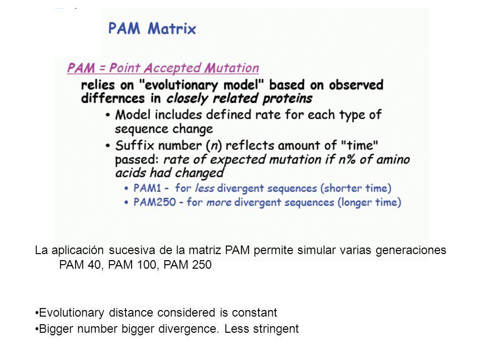 La aplicación sucesiva de la matriz PAM permite simular varias generaciones PAM 40, PAM 100, PAM 250 Evolutionary distance considered is constant Bigg