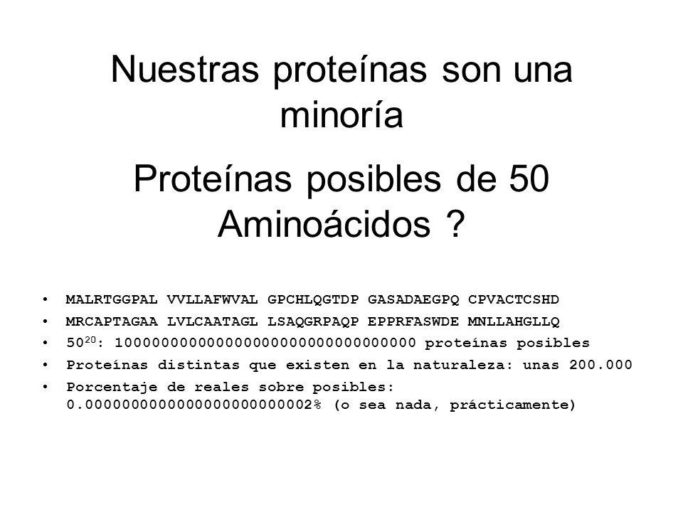 Proteínas posibles de 50 Aminoácidos ? MALRTGGPAL VVLLAFWVAL GPCHLQGTDP GASADAEGPQ CPVACTCSHD MRCAPTAGAA LVLCAATAGL LSAQGRPAQP EPPRFASWDE MNLLAHGLLQ 5