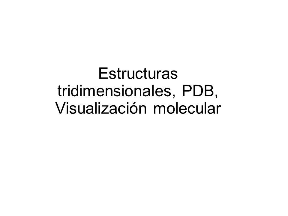 Bioinformática estructural: análisis de las estructuras de las proteínas y sus funciones mediante herramientas informáticas