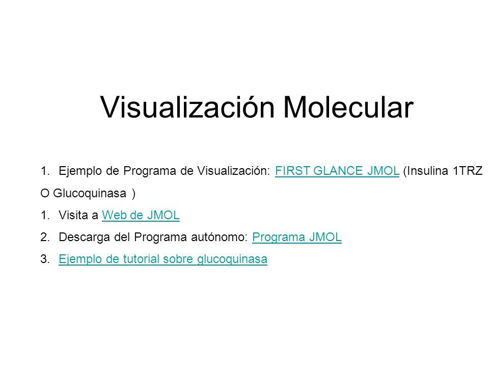 Visualización Molecular 1.Ejemplo de Programa de Visualización: FIRST GLANCE JMOL (Insulina 1TRZFIRST GLANCE JMOL O Glucoquinasa ) 1.Visita a Web de J
