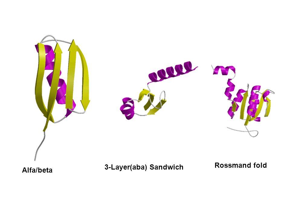 3-Layer(aba) Sandwich Alfa/beta Rossmand fold