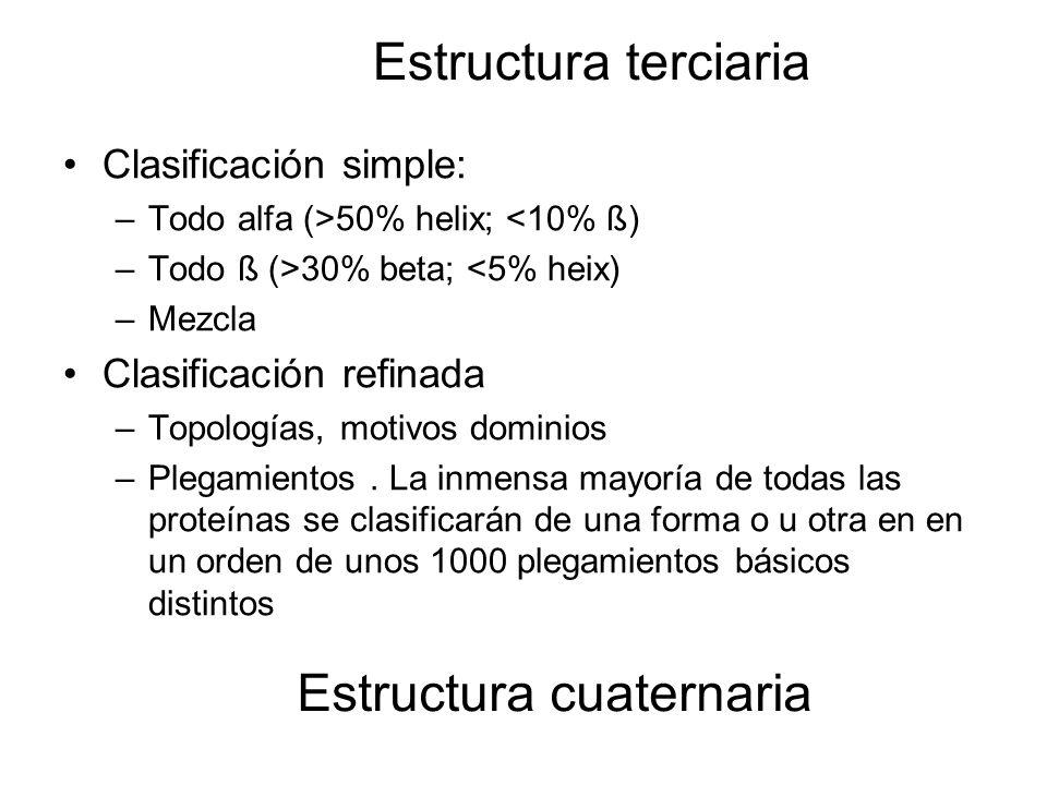 Estructura terciaria Clasificación simple: –Todo alfa (>50% helix; <10% ß) –Todo ß (>30% beta; <5% heix) –Mezcla Clasificación refinada –Topologías, m