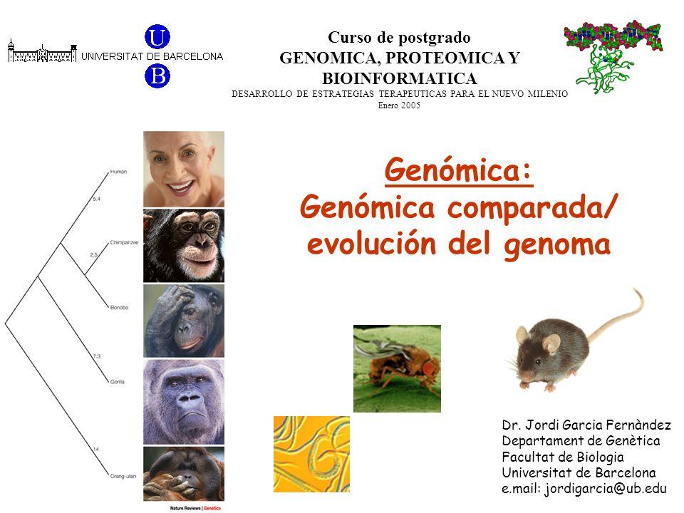 Curso de postgrado GENOMICA, PROTEOMICA Y BIOINFORMATICA DESARROLLO DE ESTRATEGIAS TERAPEUTICAS PARA EL NUEVO MILENIO Enero 2005 Dr. Jordi Garcia Fern