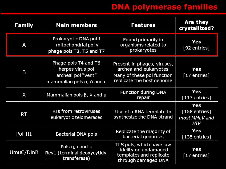 DNA polymerase families FamilyMain membersFeatures Are they crystallized.