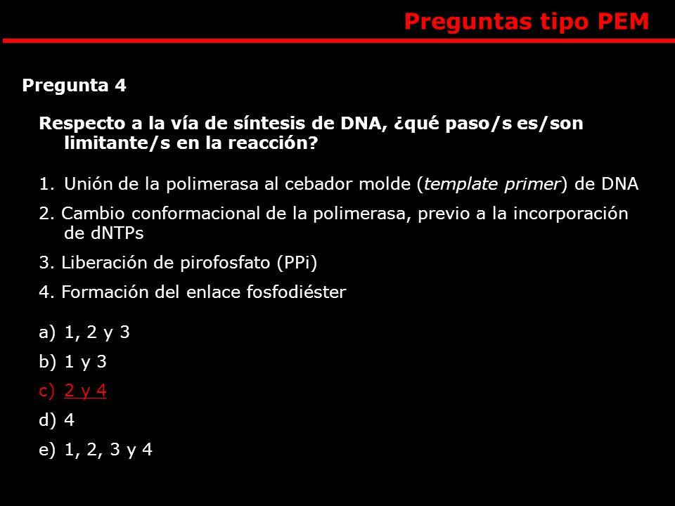 Preguntas tipo PEM Respecto a la vía de síntesis de DNA, ¿qué paso/s es/son limitante/s en la reacción? 1.Unión de la polimerasa al cebador molde (tem