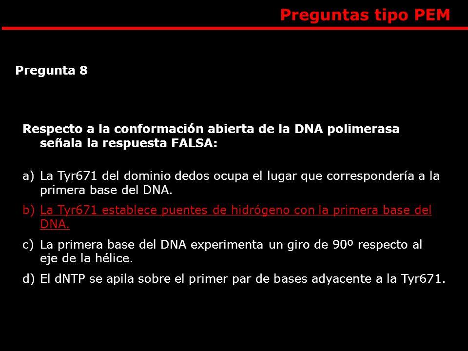 Respecto a la conformación abierta de la DNA polimerasa señala la respuesta FALSA: a)La Tyr671 del dominio dedos ocupa el lugar que correspondería a l