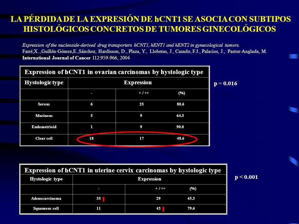 LA PÉRDIDA DE LA EXPRESIÓN DE hCNT1 SE ASOCIA CON SUBTIPOS HISTOLÓGICOS CONCRETOS DE TUMORES GINECOLÓGICOS Expression of hCNT1 in ovarian carcinomas b