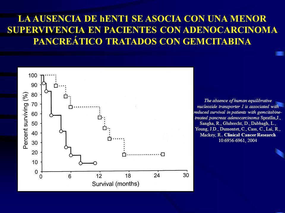 LA AUSENCIA DE hENT1 SE ASOCIA CON UNA MENOR SUPERVIVENCIA EN PACIENTES CON ADENOCARCINOMA PANCREÁTICO TRATADOS CON GEMCITABINA The absence of human e