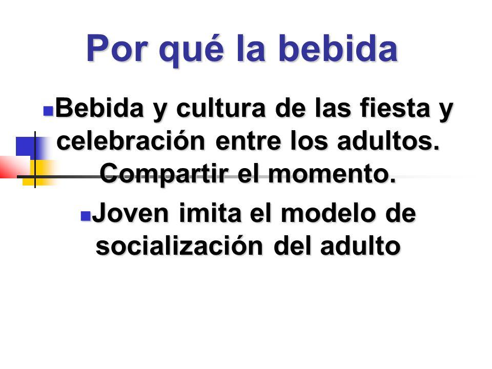 Por qué la bebida Bebida y cultura de las fiesta y celebración entre los adultos.