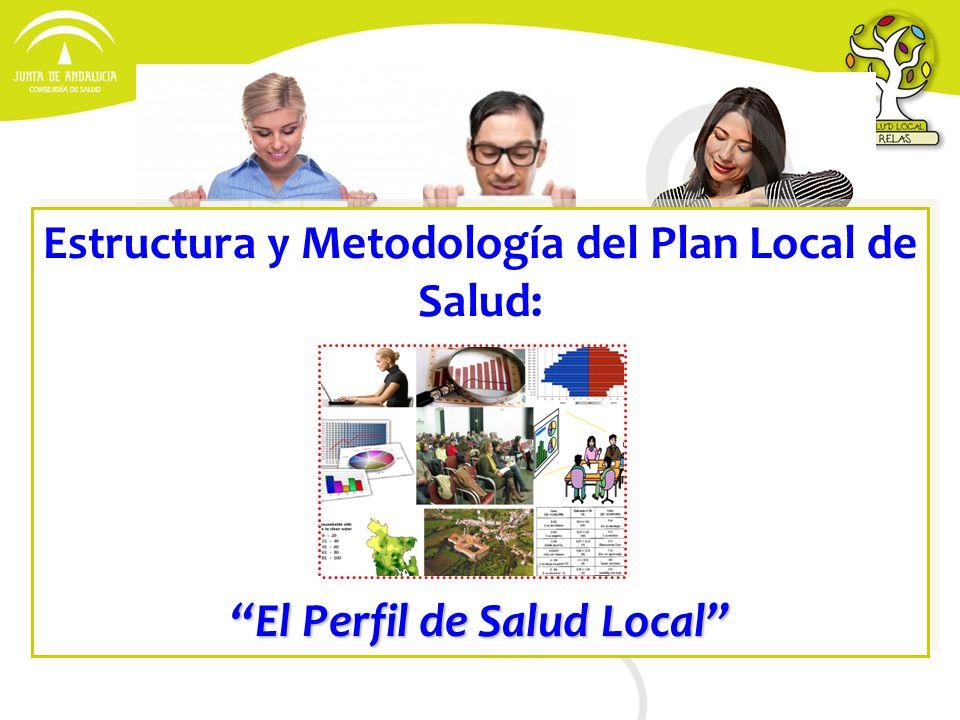 Estructura y Metodología del Plan Local de Salud: El Perfil de Salud Local Estructura y Metodología del Plan Local de Salud: El Perfil de Salud Local