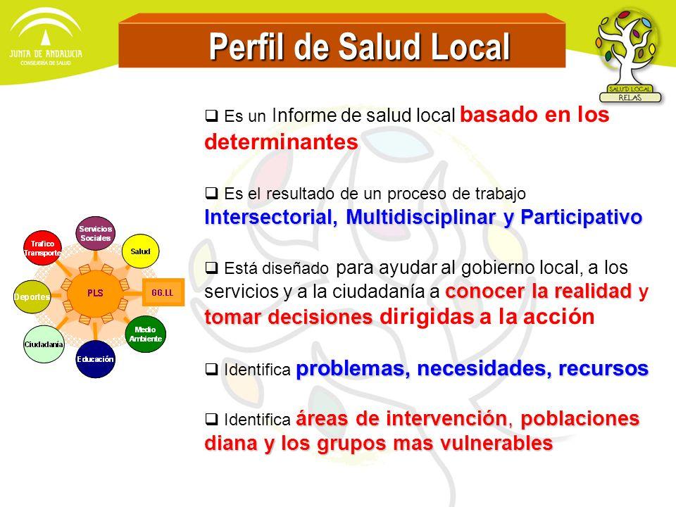 Perfil de Salud Local Perfil de Salud Local Es un Informe de salud local basado en los determinantes Es el resultado de un proceso de trabajo Intersec