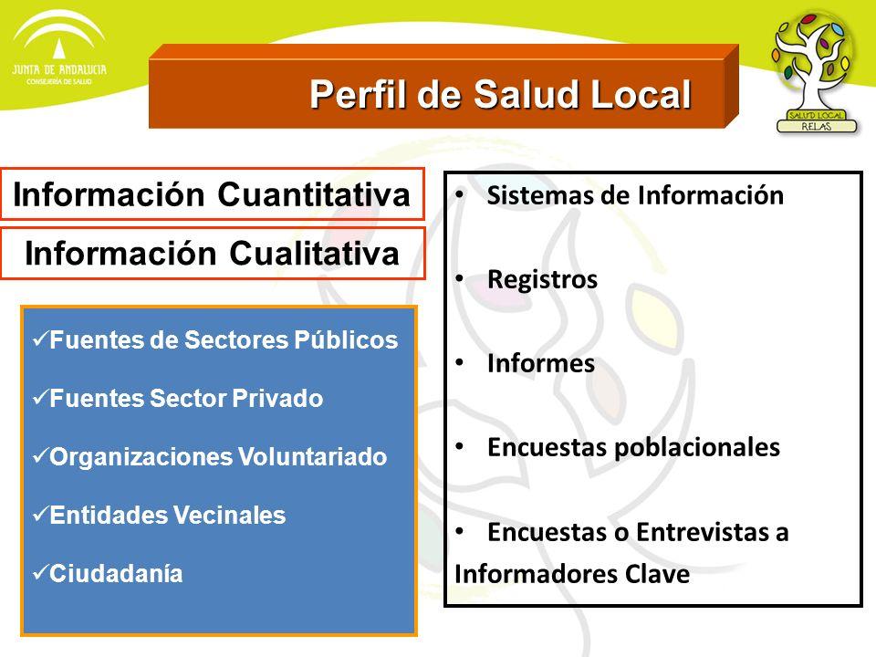 Perfil de Salud Local Perfil de Salud Local Sistemas de Información Registros Informes Encuestas poblacionales Encuestas o Entrevistas a Informadores