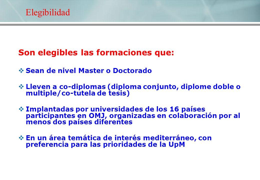 Son elegibles las formaciones que: Sean de nivel Master o Doctorado Lleven a co-diplomas (diploma conjunto, diplome doble o multiple/co-tutela de tesi