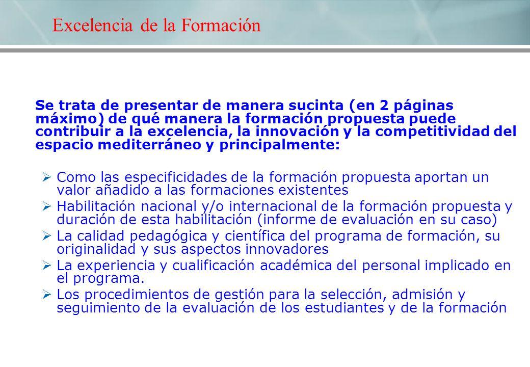 Excelencia de la Formación Se trata de presentar de manera sucinta (en 2 páginas máximo) de qué manera la formación propuesta puede contribuir a la ex