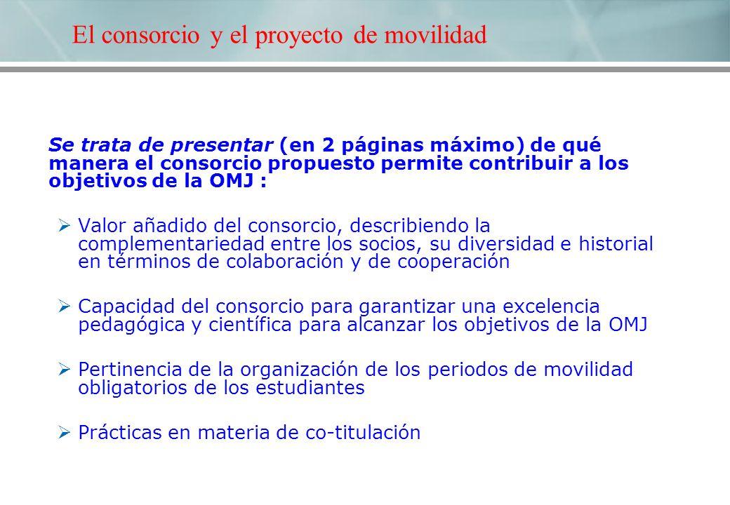 El consorcio y el proyecto de movilidad Se trata de presentar (en 2 páginas máximo) de qué manera el consorcio propuesto permite contribuir a los obje