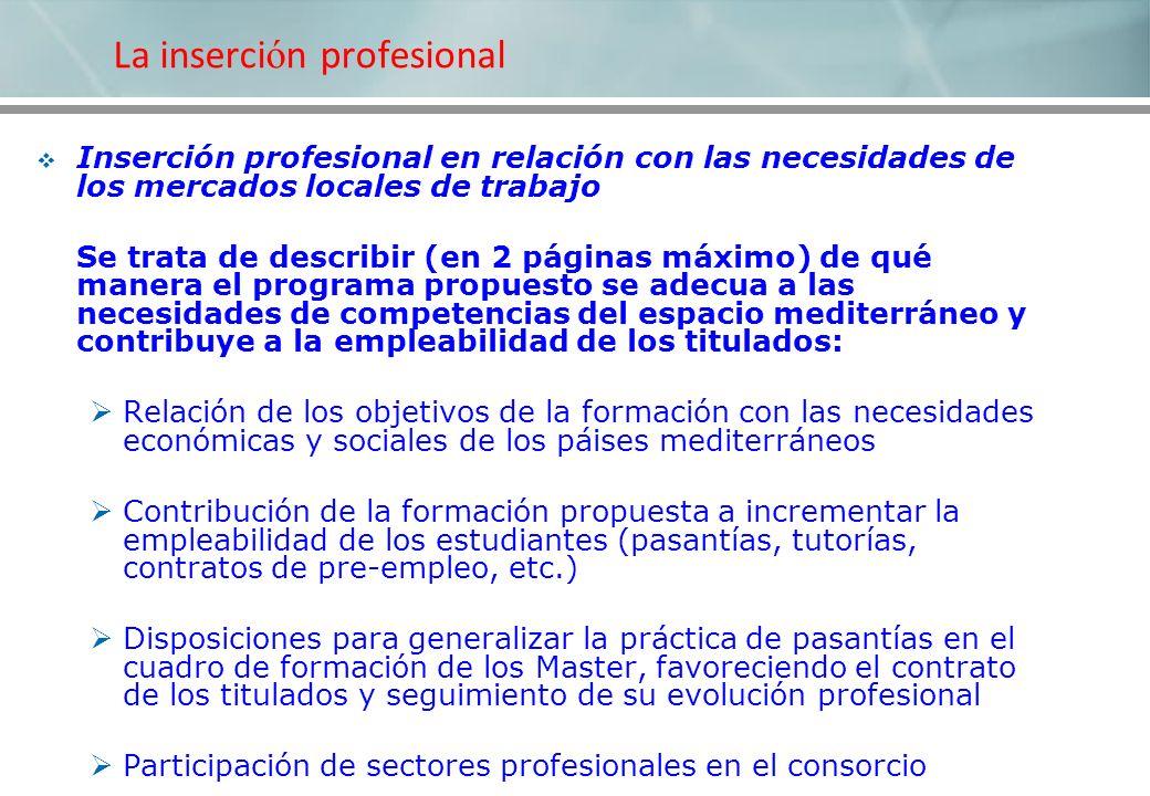 La inserci ó n profesional Inserción profesional en relación con las necesidades de los mercados locales de trabajo Se trata de describir (en 2 página