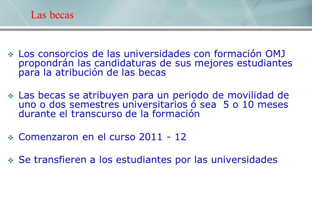 Los consorcios de las universidades con formación OMJ propondrán las candidaturas de sus mejores estudiantes para la atribución de las becas Las becas